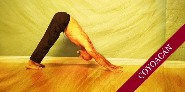 Curso de Yoga para Principiantes, Domingo 13 de Agosto 2017, a las 11:30 hrs.