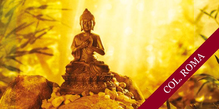 Taller práctico de  Meditación Budista: Desarrollo de Emociones Positivas, jueves 20 de abril 2017, a las 19:30 hrs.