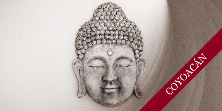 Curso de Mindfulness y la Muerte