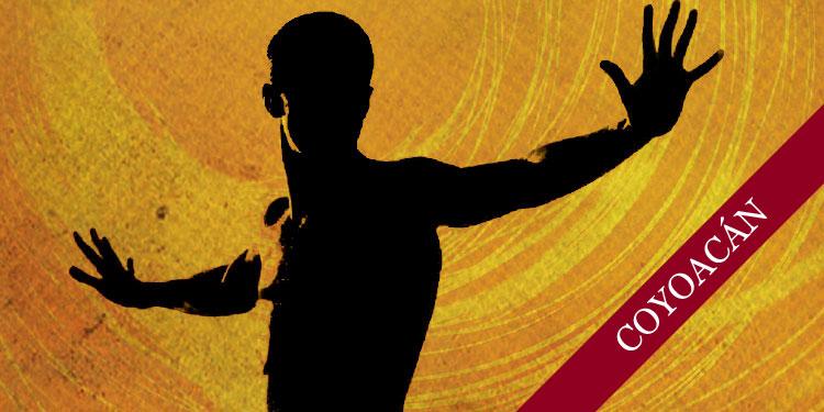 Curso de Chi Kung, Martes 29 de agosto 2017, a las 10:30 hrs.