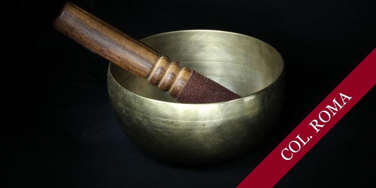Curso Fundacional de Meditación y Budismo: ¿Qué es Realmente la Meditación?, Domingo 30 de Abril 2017, a las 11:30 hrs.