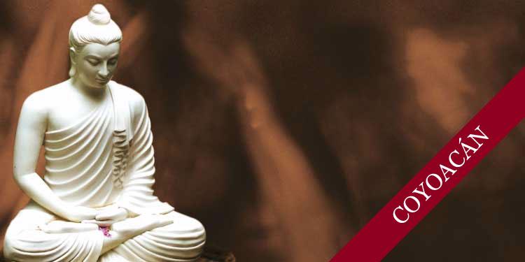 Curso de Meditación Budista por las tardes: ¿Qué es realmente la meditación?, Martes 2 de Mayo 2017, a las 17:30 hrs.