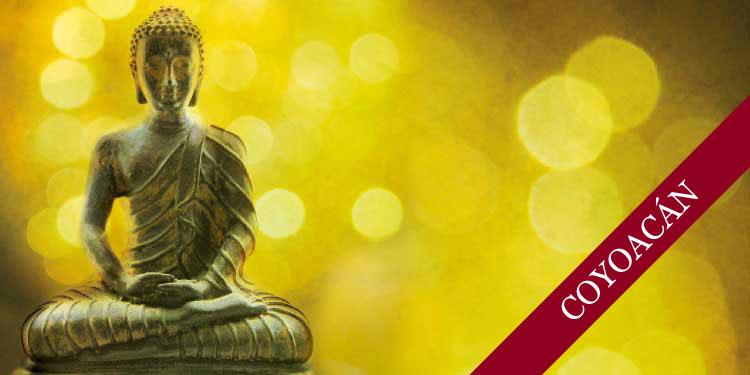 Tarde de Meditación para Jóvenes: Desarrollo de Atención Consciente, Sábado 5 de Mayo 2018, a las 15:30 hrs.