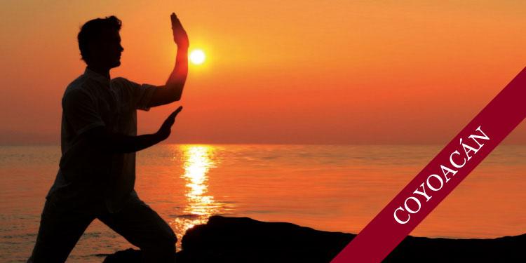 Taller Especial de Chi Kung: Buscando Calma y Relajación, en el Anexo de Coyoacán, Domingo 2 de Julio 2017, a las 11:00 hrs.