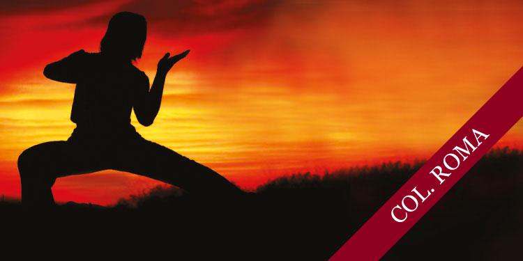 Taller Especial de Chi Kung: Buscando Calma y Relajación, Sábado 1º de Julio 2017, a las 11:30 hrs.