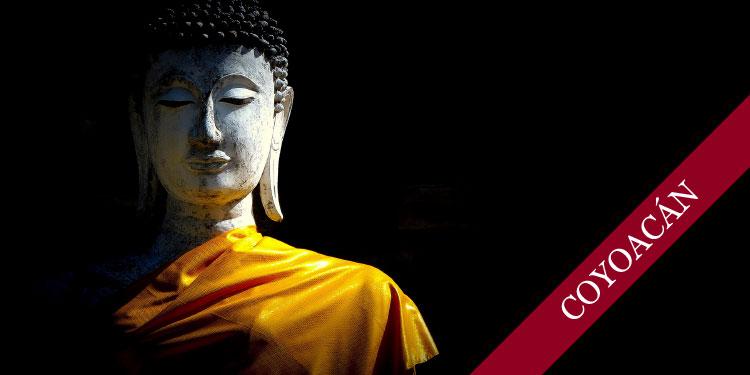 Tarde Especial para Mitras con Dh. Dharmapriya: Los Seis Énfasis Distintivos de la Comunidad Budista Triratna