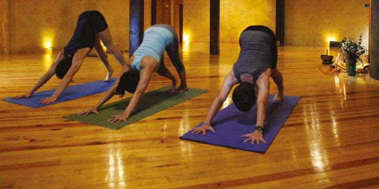 Clase Especial de Yoga y Meditación, celebrando el Día Internacional del Yoga, Jueves 21 de Junio 2018, a las 12:00 hrs.
