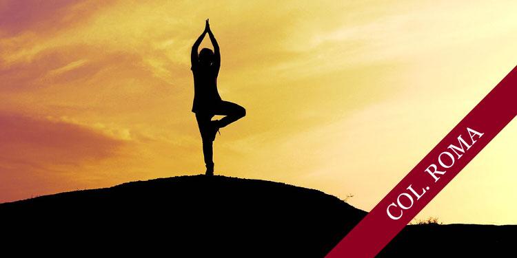 Cursos breves de Yoga para Principiantes, Miércoles 22 de Noviembre 2017, a las 19:30 hrs.