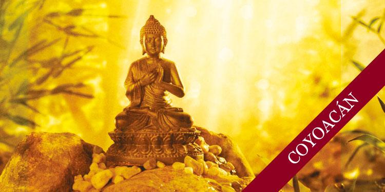Taller práctico de Meditación Budista para Jóvenes: Desarrollo de Emociones Positivas, Sábado 2 de septiembre 2017, a las 15:00 hrs.