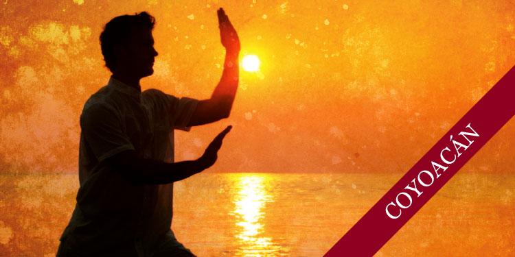 Taller Especial de Chi Kung: Buscando Calma y Relajación, Martes 28 de Noviembre 2017, a las 10:30 hrs.