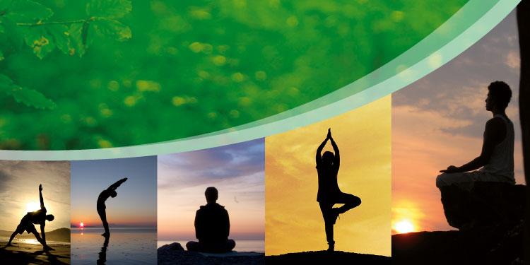 Retiro de Fin de Año de Yoga Terapéutico con Meditación Budista Restaura Tu Cuerpo, del miércoles 27 al sábado 30 de diciembre, 2017