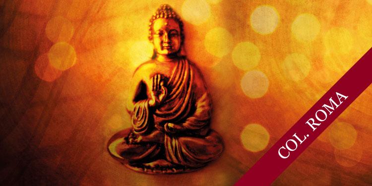 Día Especial de Meditación para recibir el año, martes 1° de enero 2019, a las  11:30 hrs.