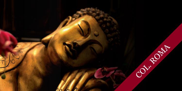 Noche de Comunidad: Una Hermosa Muerte, el Deceso del Buda, martes 13 de febrero, 2018 a las 19:00 hrs.