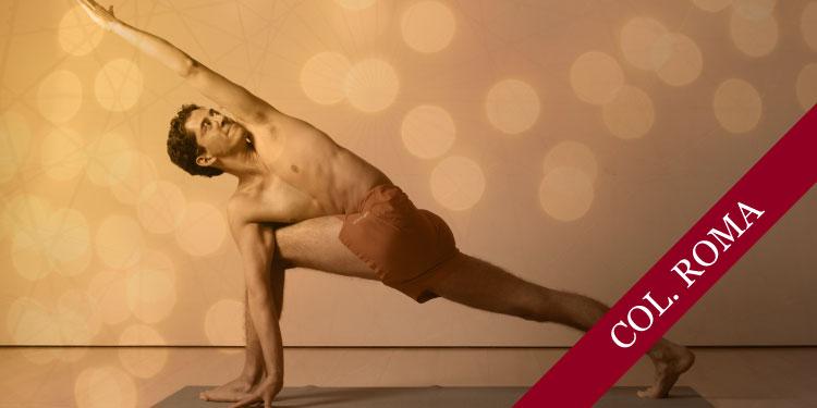Celebrando 5 Años de Cursos de Profundización de Yoga Iyengar, Martes 22 de Enero 2019, a las 19:30 hrs.