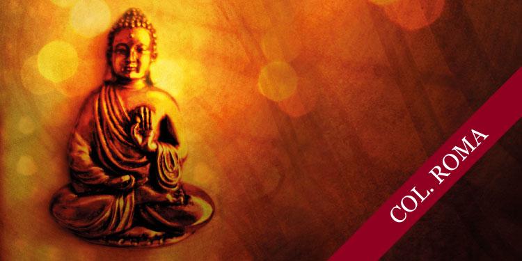 Día Intensivo de Práctica de Meditación, Lunes 19 de Noviembre 2018, a las 10:30 hrs.