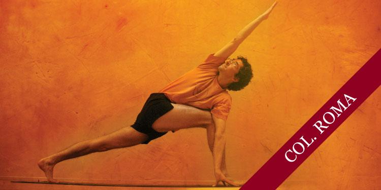 Curso de Profundización de Yoga Iyengar: 9 Familias de Asanas, Martes  20 de Febrero 2018, a las 19:30 hrs.