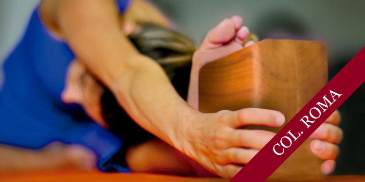 Clase Especial: Los apoyos en la Práctica de Yoga, el bloque, sábado 3 de Febrero 2018, a las 09:30 hrs.