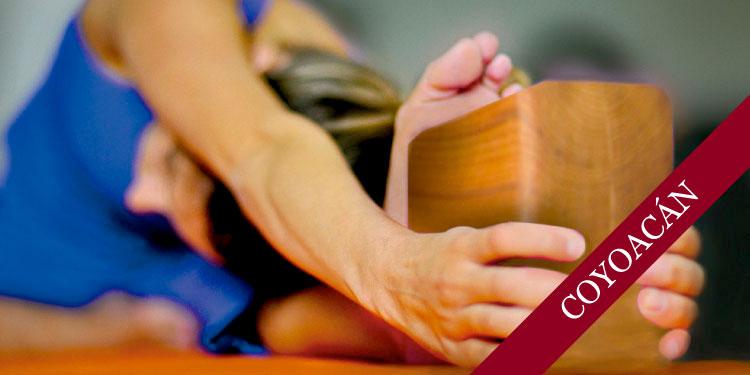 Taller Especial de Yoga: Uso de apoyos, el bloque, Viernes 9 de Noviembre 2018, a las 19:30 hrs.