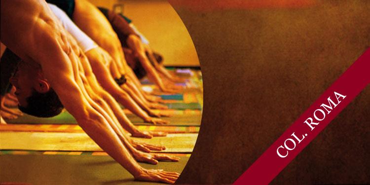 Taller especial de Yoga para Iniciar el Año, martes 1º de enero 2019 de 10:30 a 13:30 hrs.