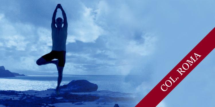Taller Especial de Yoga: Profundizando en las posturas de equilibrio, Sábado 24 de Marzo 2018, a las 11:30 hrs.