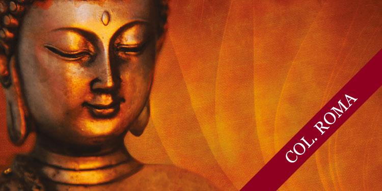 Taller especial de Meditación Budista: Desarrollo de Emociones Positivas, Martes 2 de Octubre 2018, a las 19:30 hrs.