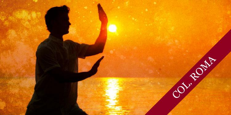 Curso de Chi Kung, Lunes 30 de Julio 2018, a las 17:30 hrs.