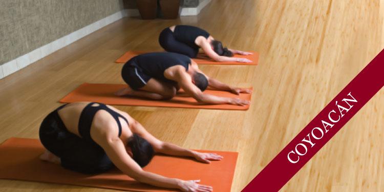 Taller de Yoga Terapéutico para la Columna Vertebral, Miércoles 12 de septiembre 2018, a las 19:30 hrs.