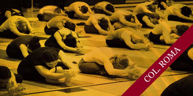 Día Intensivo de Yoga, Lunes 4 de Febrero 2019, a las 10:30 hrs.