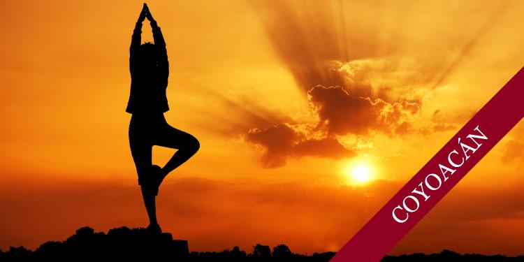 Curso de yoga para Principiantes, Sábado 22 de Septiembre, 2018 a las 9:30 hrs.