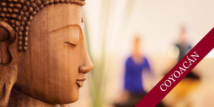Curso de Budismo y Meditación: El Budismo, su enseñanza y su práctica, miércoles 9 de enero 2019 a las 17:30 hrs.