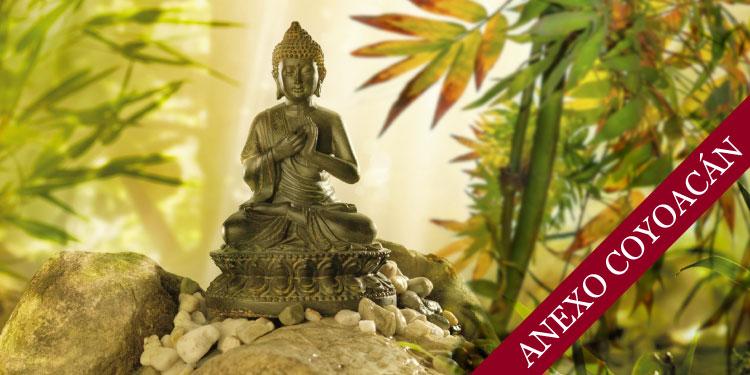 Curso sistemático en mindfulness y meditación: Mindfulness para la Vida, Vivir con Atención Plena, Domingo 17 de Junio 2018, a las 11:30 hrs.
