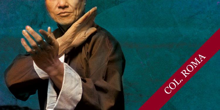 Curso de Tai Chi, Sábado 29 de Septiembre 2018, a las 14:15 hrs.