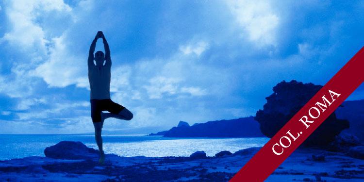 Curso de Yoga para Principiantes, Lunes 21 de Enero 2019, a las 19:30 hrs.