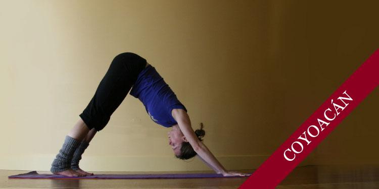 Curso de Yoga para Principiantes, Domingo 18 de Noviembre 2018, a las 11:30 hrs.