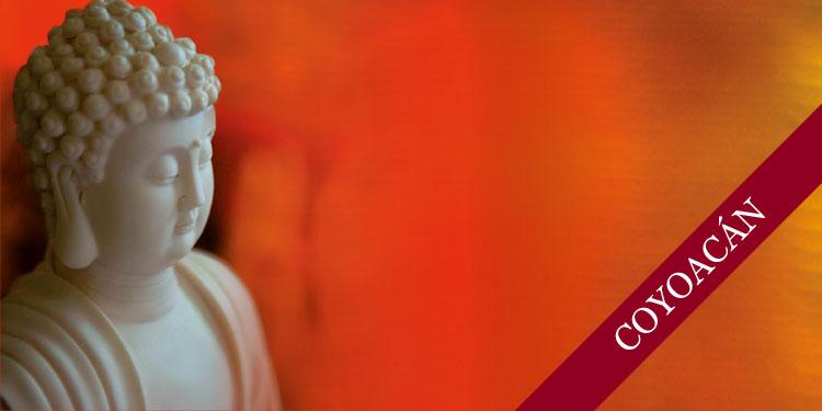 Curso de Meditación Budista para Jóvenes, Sábado 10 de Noviembre 2018, a las 11:30 hrs.