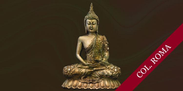 Taller Práctico de Meditación Budista: Desarrollo de Emociones Positivas, Martes 7 de Agosto 2018, a las 19:30 hrs.