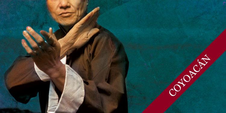 Curso de Tai Chi, Martes 15 de enero 2019, a las 10:30 hrs.