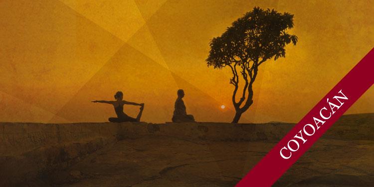 Curso por las tardes de Meditación y Yoga, Lunes 1º de Octubre 2018, a las 17:30 hrs.