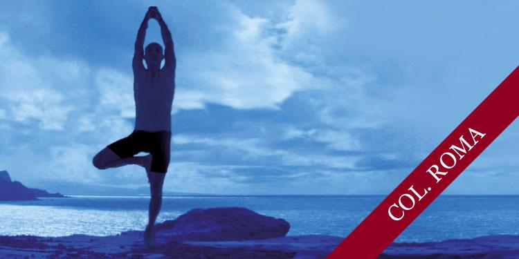 Día Especial de Yoga: Profundizando en las posturas de Equilibrio, Lunes 19 de Noviembre 2018, a las 10:30 hrs.