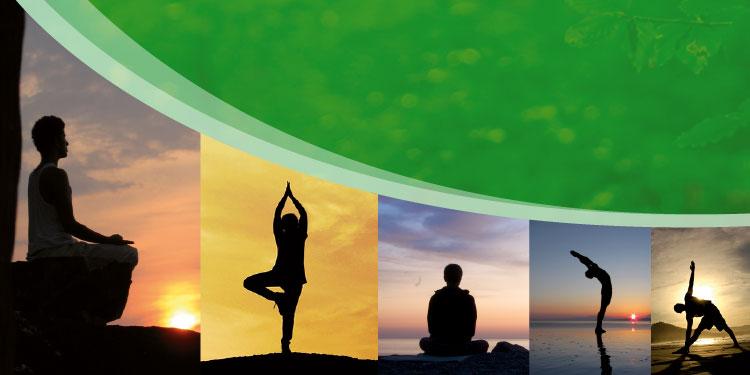 Retiro de Fin de Año de Yoga Terapéutico con Meditación Budista, del Jueves 27 al Domingo 30 de Diciembre 2018