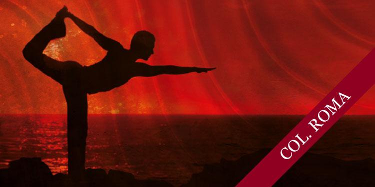 Curso Breve de Yoga para Principiantes, Sábado 23 de Marzo 2019, a las 09:30 hrs.