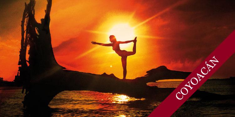 Taller Especial de Yoga: Cerrando ciclos, miércoles 26 de diciembre 2018, a las 19:30 hrs.