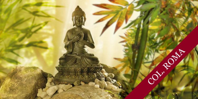 Curso sistemático en mindfulness y meditación: Mindfulness para la Vida, Vivir con Atención Plena, Martes 19 de Marzo 2019, a las 16:30 hrs.
