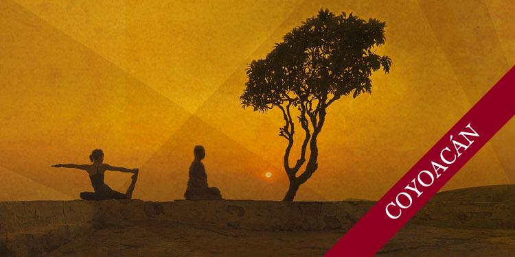 Curso de Meditación y Yoga, Sábado 9 de Marzo 2019, a las 11:30 hrs.
