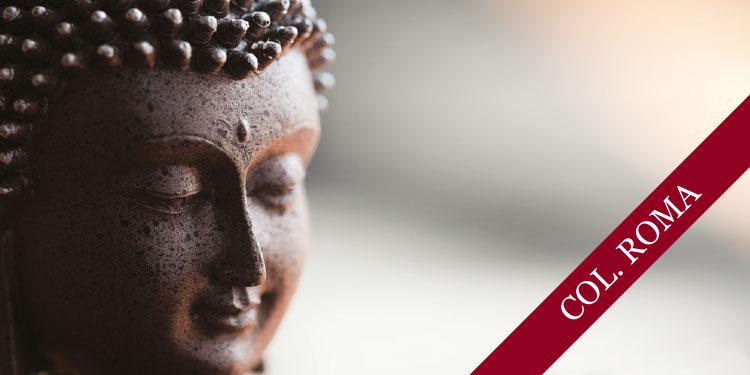 Sesión de Meditación Metta Bhavana: Amor Incondicional, Jueves 14 de Febrero 2019, a las 17 30 hrs.
