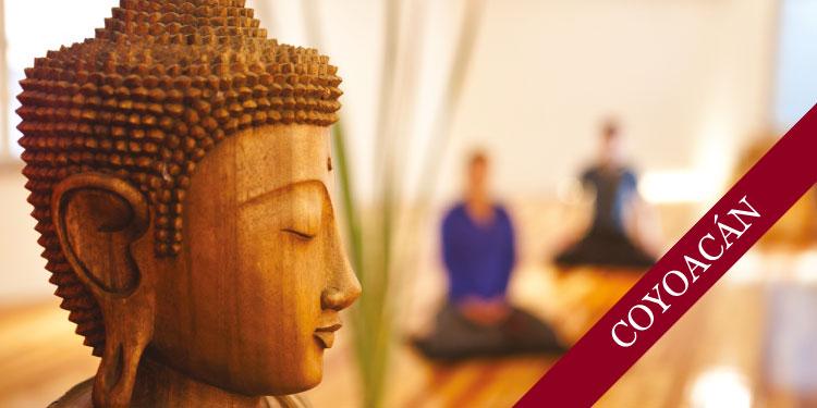 Sesión Abierta de Meditación Budista, Jueves 18 de Abril 2019, a las 19:30 hrs.