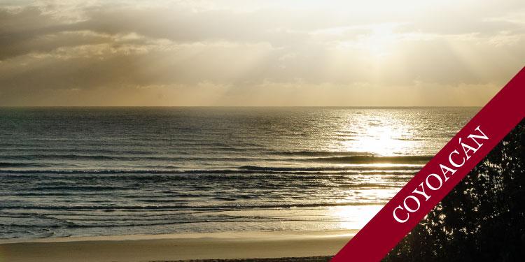 Curso sistemático en mindfulness y meditación: Mindfulness para la Vida, Vivir con Atención Plena, Sábado 11 de Mayo 2019, a las 11:30 hrs.